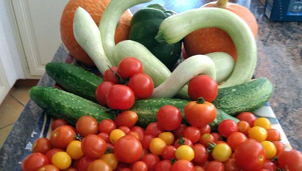 Les produits frais du jardin d'Emmanuel Sofonéa